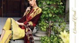 Pashmina Twill Shawal Collection By House Of Chrizma 2018-19 (23)