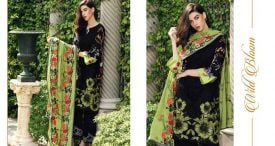 Pashmina Twill Shawal Collection By House Of Chrizma 2018-19 (6)